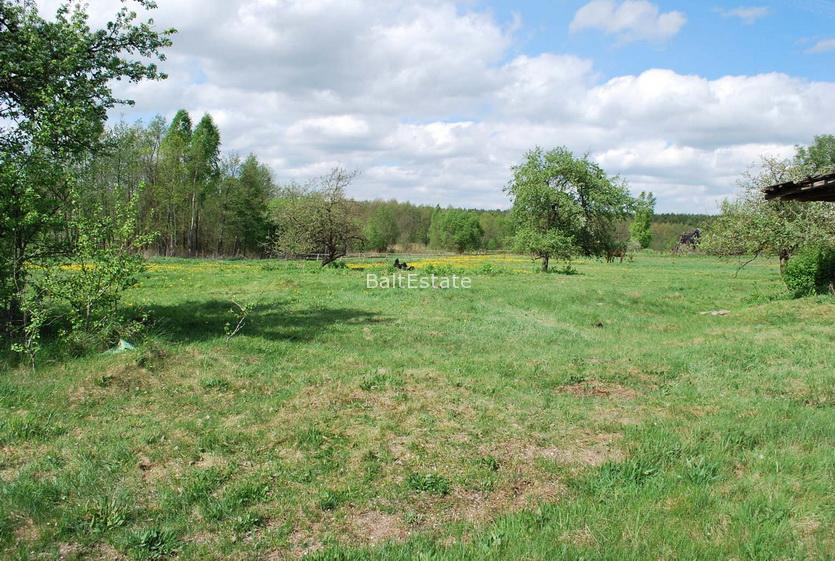 A huge plot in Lithuania near Vilnius